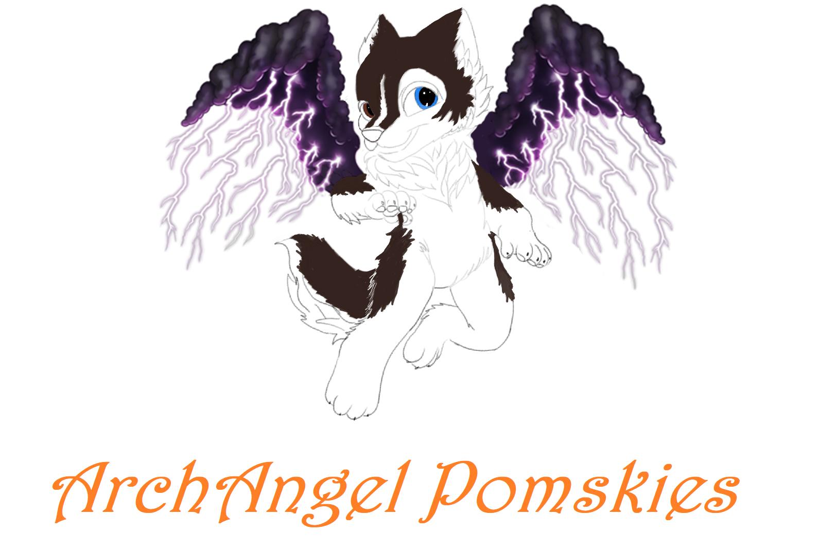 ArchAngel Pomskies
